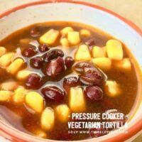 Instant Pot Vegetarian Tortilla Soup