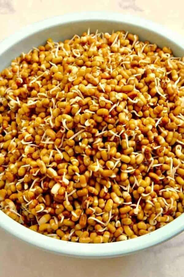 Instant Pot Sprouted Beans
