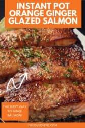 instant pot salmon