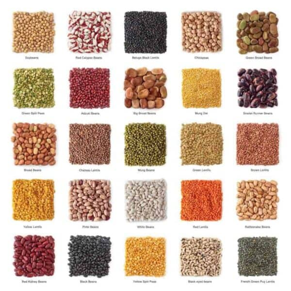 best rice and beans online