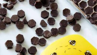 Keto Friendly Chocolate Chips Recipe
